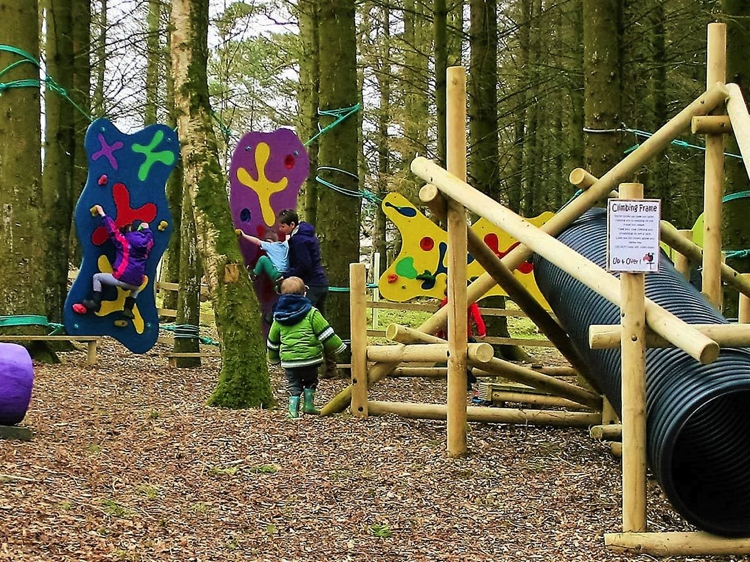 Rookery Woods, The Keswick Climbing Wall