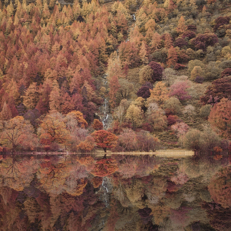 An autumnal Buttermere