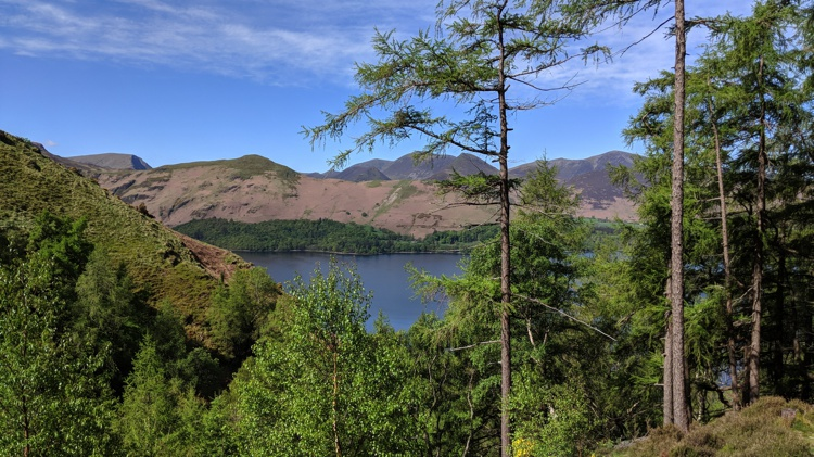 Derwent Water Visible Through the Trees