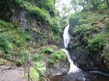 Aira Force Loop