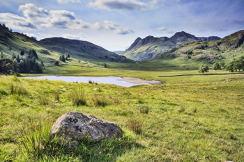 Summer in Blea Tarn