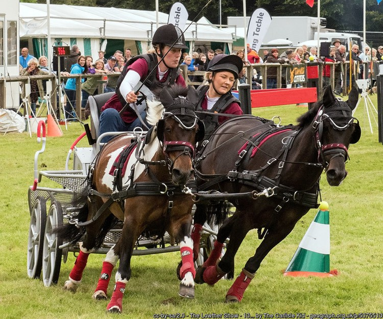 Lowther Show 2016
