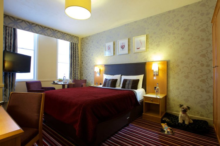 Rooms at Hallmark Hotel Carlisle