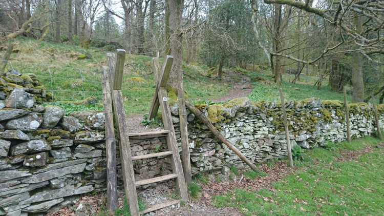 The Stile into the Wood