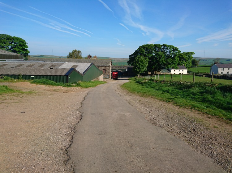 Looking Back toward the Farm