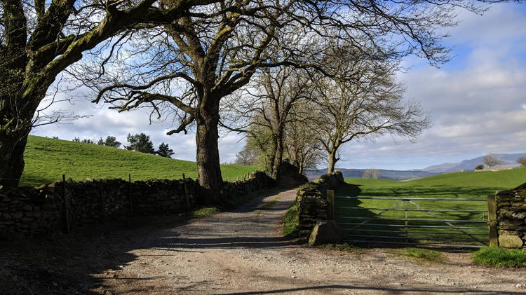 The Gate & Bridleway at the Start