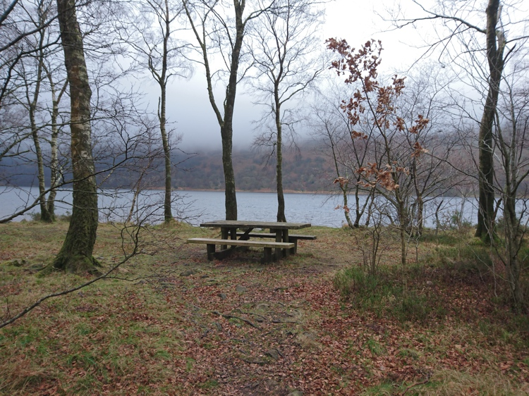 A Picnic Bench with a Lake View