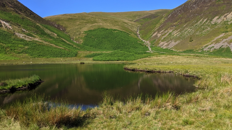 The Tarn Above High Nook Farm