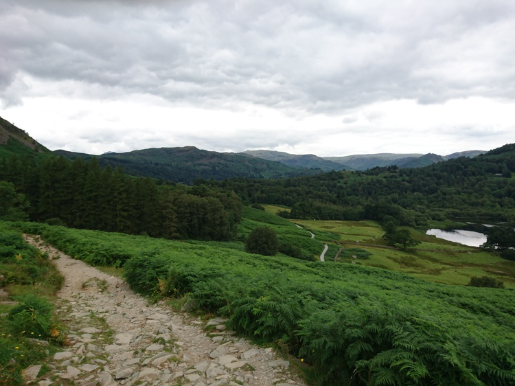 Path Overlooking Rydal Water